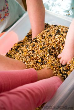 Playing in a tub of seeds ~ great sensory play.   When you are done, feed it to our chickens:)