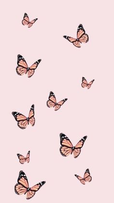 iphone wallpaper What if the only thing holding you back from experiencing and building the life of your dreams is you? Butterfly Wallpaper Iphone, Iphone Wallpaper Vsco, Homescreen Wallpaper, Iphone Background Wallpaper, Cool Wallpaper, Lock Screen Wallpaper, Wallpaper Quotes, Iphone Wallpapers, Aztec Wallpaper