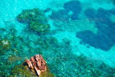 Cala Macarella Menorca turquoise Balearic Mediterranean ...  Macarella, background, balearic, beach, beautiful, blue, cala, cape, ciudadela, ciutadella, cliff, coast, coastline, creek, isla, island, landmark, landscape, mediterranean, menorca, minorca, moss, nature, ocean, outdoor, paradise, places, rock, scenic, sea, seascape, shallow, shore, sky, spain, stones, summer, sun, sunny, touristic, transparent, travel, trees, turquoise, vacation, water, waves, wavy, white