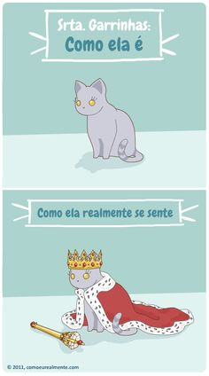 Your Highness, Miss Lil' Claws - image Memes Do Dia, C Cassandra, Funny Memes, Jokes, Baby E, Best Friends Forever, I Love Cats, Claws, Animals And Pets
