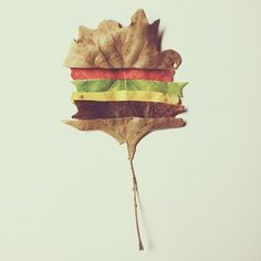 Cheeseburger by Brock Davis