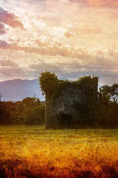 Country Tower - 2015 © Chiara Vignudelli