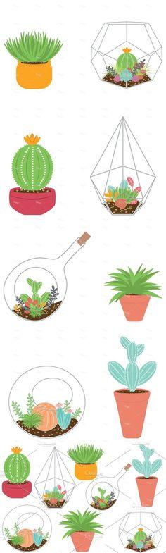 Terrariums and Plants EPS & PNG #succulent #terrarium