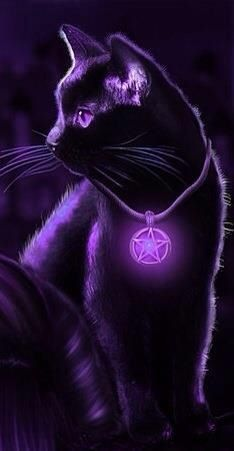 Gypsy Moon's Enchanted Chronicles cat with purple lighting effects; coll… Gypsy Moon's Enchanted Chronicles cat with purple lighting effects; Warrior Cats, I Love Cats, Cute Cats, Gypsy Moon, Image Chat, Purple Cat, Neon Purple, Purple And Black, Cute Animal Drawings