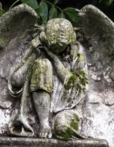 """Cemetery Angel- """"I am here to serve all humanity"""" Cemetery Angels, Cemetery Statues, Cemetery Art, Angel Statues, Angels Among Us, Angels And Demons, Statue Ange, Old Cemeteries, Graveyards"""