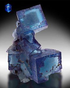 Fluorine bleue de Denton Mine, Cave-in-Rock, Hardin County, Illinois, USA (pièce de Mim Museum)