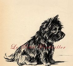 1937 Lucy Dawson Canine Cairn Terrier Dog Portrait of 'Mac'  Oh my gosh it's our little Tish and Toto ((**))