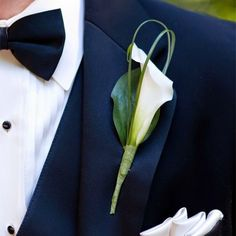 24 Elegant Ideas To Incorporate Calla Lilies Into Your Spring Wedding groom boutonnière Calla Lily Boutonniere, Calla Lily Bouquet, Groom Boutonniere, Boutonnieres, Calla Lily Wedding Flowers, Spring Wedding, Wedding Day, Wedding Groom, Free Wedding