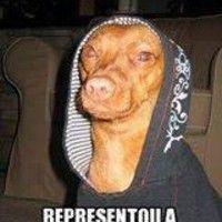 MEGA=HOJE=NA=CASA=DJ=SONECA=VAI=ROLA=UMA=PUTARIA=STUDIO=BAGDA by DJSONECASTUDIO BAGDA2 on SoundCloud