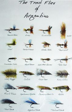 Trout flies of Argentina...reminds me of my dad's fly fishing making, so pretty!