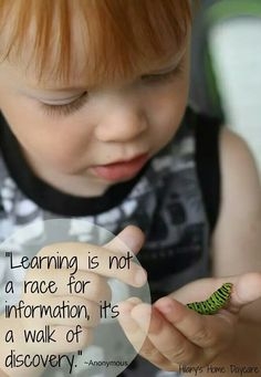 learning is not a race for information but a walk of discovery