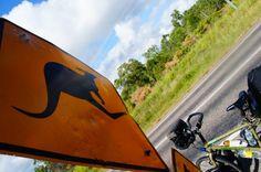 Bici kangaroo