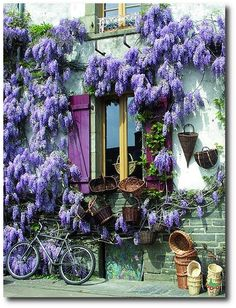 Lavender Provence Colors-Painted Provence Furniture, French Provence, French Provincial, Louis XV Furniture, French Style, Country French, French Country, Painted Furniture, Annie Sloan, Rustic Painted Furniture