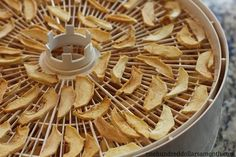 How To Dehydrate Apples With A Food Dehydrator.  Dip apples in a solution of water and lemon juice to keep from apples turning brown.
