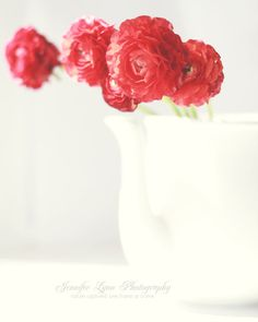red ranunculus white teapot