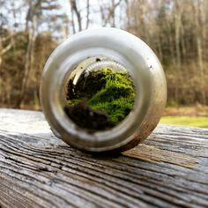 Mini world in a bottle