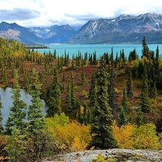 It's that time of year when fall colors are cropping up at #LakeClark National Park (@lakeclarknps) in #Alaska, and it is gorgeous. Photo by J. Mills, #NationalPark Service.