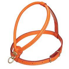PetEgo Fashion Leather Dog Harness in Orange | Wayfair
