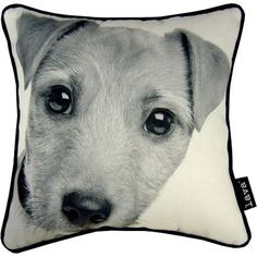 """Jack Russell Pillow, 12"""" x 12"""""""