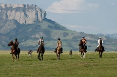 Kwazulu Natal, Horse Riding, Tourism, Scenery, Van, Horses, River, Explore, Mountains