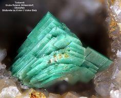 Torbernite / Roland Mine, Bavaria, Germany. Uranium Copper Phosphorus: Secondary mineral in granites, and other uranium-bearing rocks.