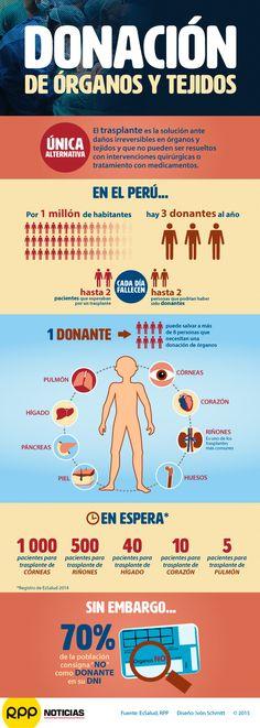 Un solo donante voluntario puede salvar a más de 8 personas. Conoce este y otros datos en nuestra infografía.