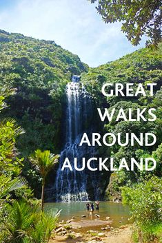 Get active this summer and make the most of what Auckland has to offer by taking a walk along some of our most scenic tracks and walkways. New Zealand Travel Guide, Great Walks, Summer Bucket Lists, South Island, Travel Information, Auckland, Adventure Travel, Face Tats, Exercises
