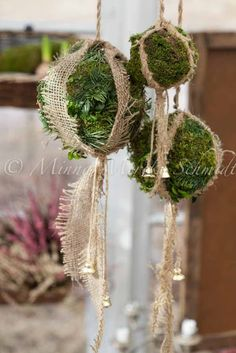 Christmas decorations... roll a ball of moss, secure with metal wire. Decorate with your favorite twine.