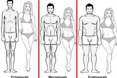 Understanding Your Body Type for Ultimate Fat Loss and Muscle...