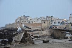 Dusk in Essaouira