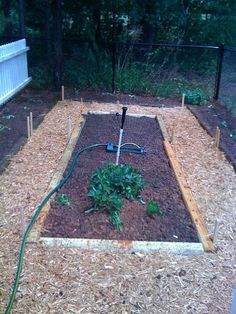 My Vegetable Garden Each year I enjoy working in my vegetable garden. It is just large enough to give me the variety that we lik...