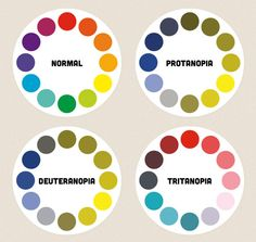 Color Blindness: A diagram showing colour wheels as they might be perceived by people with different types of colour blindness.