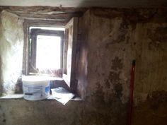 Cellar window.