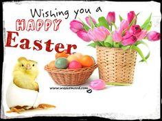 Happy Easter. www.wazurmood.com