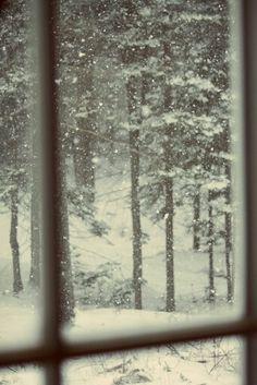 Snow.....out my window...I wish!!!