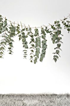 A quick (and easy) DIY eucalyptus garland - DIY home decor - Your DIY Family Here is a quick and easy diy eucalyptus garland to make this Christmas. This eucalyptus garland makes a really pretty backdrop to a dining table. Minimal Christmas, Christmas Diy, Homemade Christmas, Christmas Garlands, Disney Christmas Crafts, Scandinavian Christmas Decorations, Modern Holiday Decor, Natural Christmas, Modern Decor