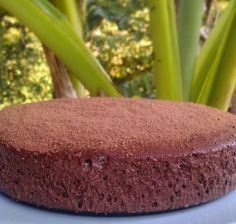 Gâteau à la mousse au chocolat, facile et rapide