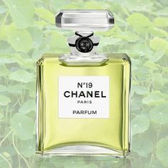 Summer Fragrance: Best Green Perfumes - think moss, green tea, young leaves, clover, and grass. | 5. Chanel No. 19 ($115).