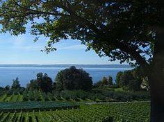 Lake Constance - Wikipedia