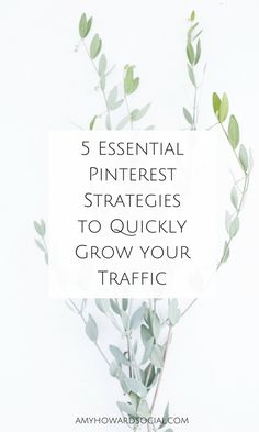 5 Essential Strategies to Quickly Grow Your Trafiic Facebook Marketing, Online Marketing, Social Media Marketing, Content Marketing, Marketing Strategies, Marketing Tools, Affiliate Marketing, Digital Marketing, Amy Howard