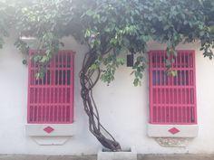 Cartagena de Indias / Ventanas y Blanco