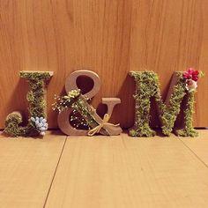 イニシャルオブジェにはモスを貼り付け、ご新郎さまにはブルーの、ご新婦さまにはピンクと赤のお花を着けておめかしされました。他のアイテムとのコーディネートもばっちりですね* Wedding Welcome Board, Welcome Boards, Wedding Reception Themes, Wedding Decorations, Picture Wall, Dried Flowers, Alphabet, Valentines, Lettering