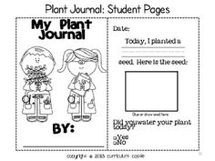PLANT INVESTIGATION UNIT: ALL ABOUT PLANTS, LIFE CYCLE AND NEEDS! - TeachersPayTeachers.com