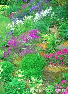 Use rain water to create a yardsmart yard - tips from the City of Calgary & the Calgary Horticultural Society. Watch News, Rain Barrel, Calgary, Stepping Stones, Yard, Gardening, City, Create, Water