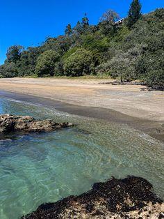 #nz #newzealand #summer #water #beach New Zealand, Beach, Water, Summer, Outdoor, Gripe Water, Outdoors, Summer Time, The Beach