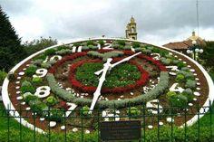 The floral clock in downtown Zacatlán, Puebla Beautiful Sites, Beautiful Gardens, Garden Theme, Garden Art, Garden Clocks, Floral Clock, Miracle Garden, Topiary Garden, Topiaries