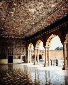 #Lahorefort #seeshmahal #historic #beauty #300yearoldancient