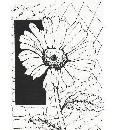 Contexte caoutchouc Unmounted Stamp - Daisy