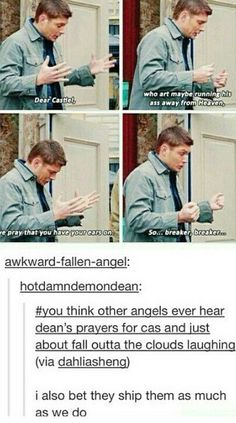 I bet the other angels ship Destiel as much as we do.