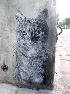 Street art! Featuring a cat! In Paris! (Vitry-sur-Seine)